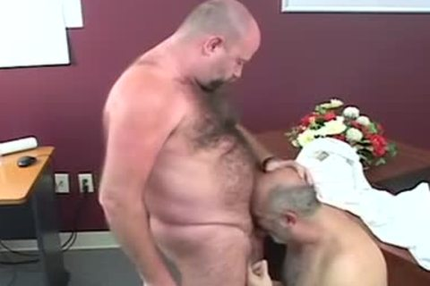beautiful chubby Bears pounding After Giving blowjob