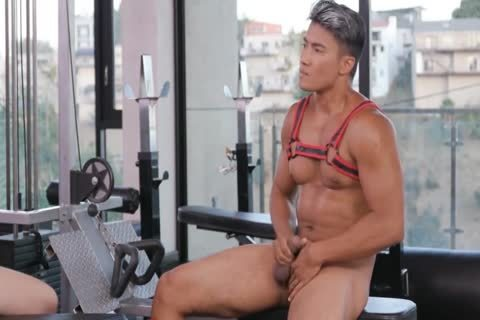 Masturbation & Barebacking In The Gym